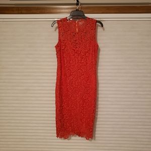 Red Lace Calvin Klein Dress